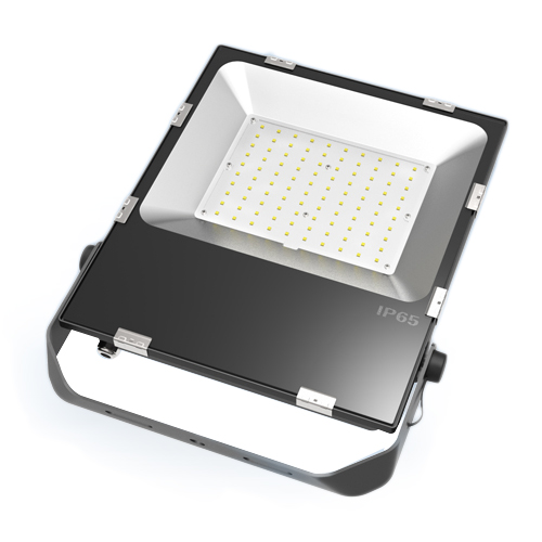 12V DC Flood Light 100w